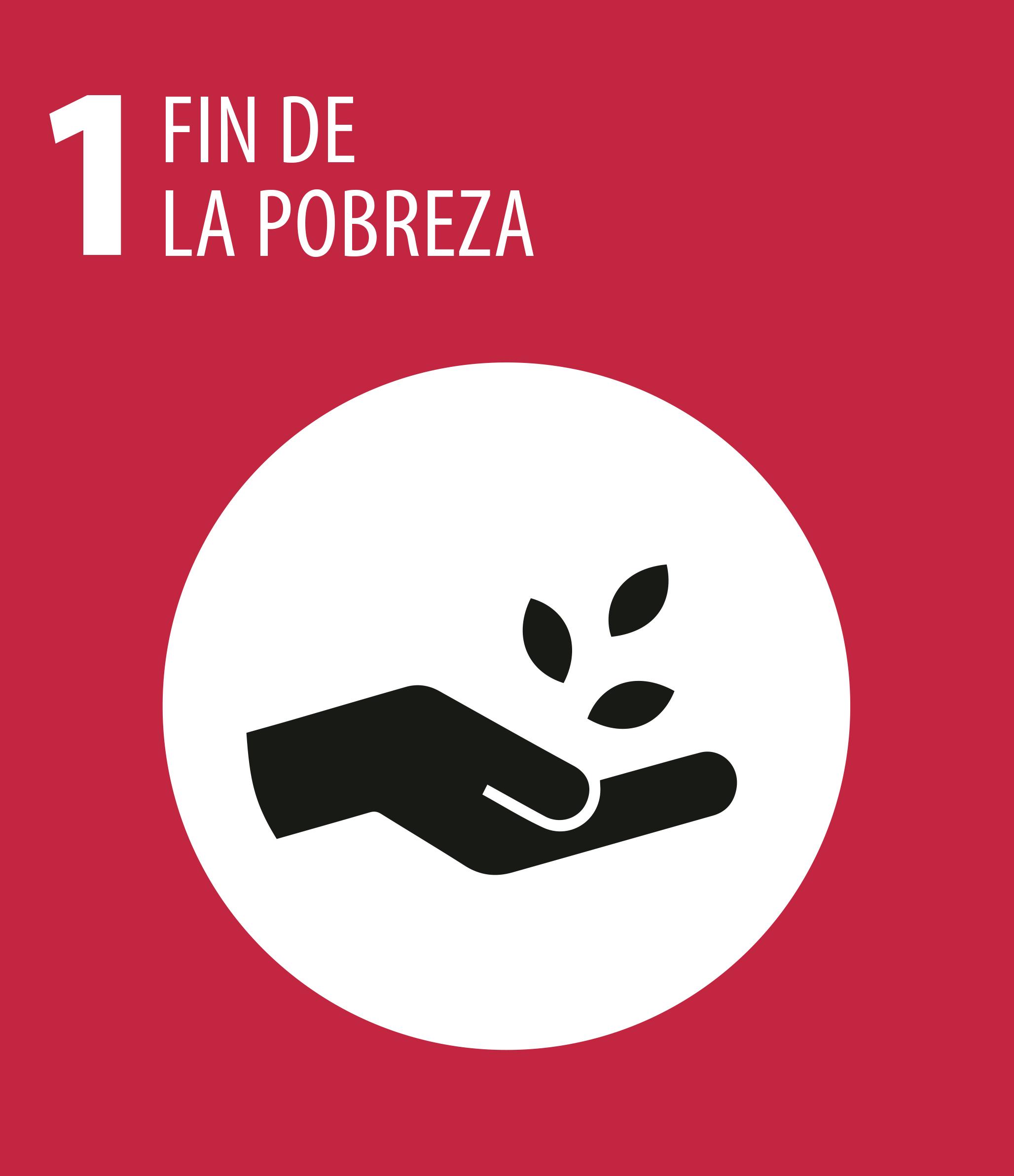 ODS 1 Fin pobreza