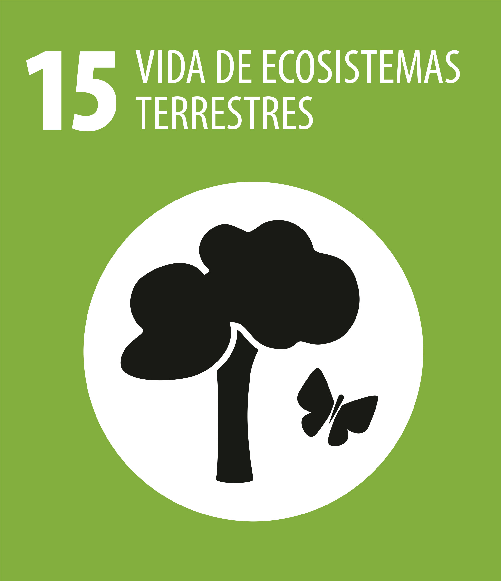 ODS 15 Vida ecosistemas terrestres