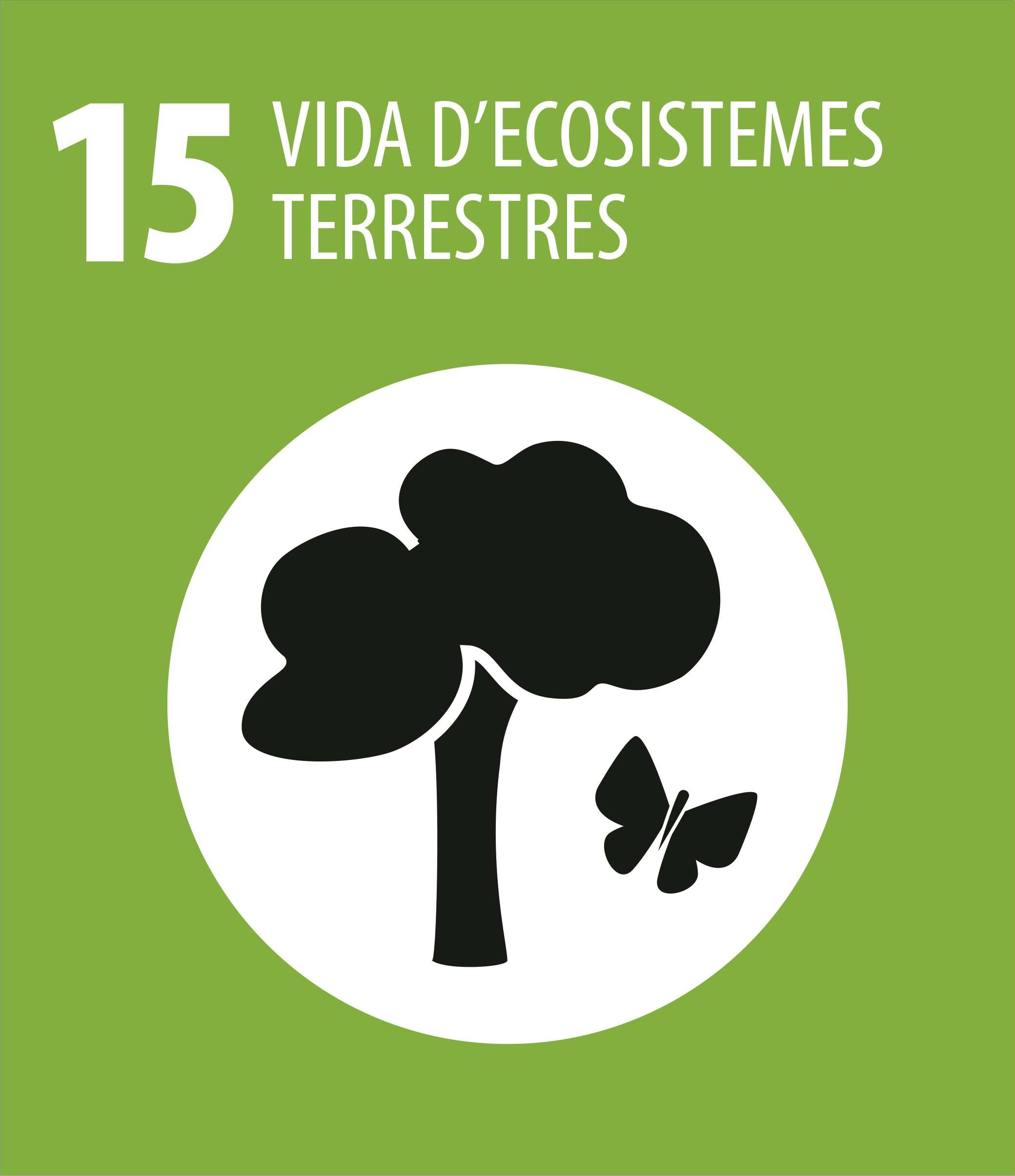 ODS 15 Vida ecosistemes terrestres