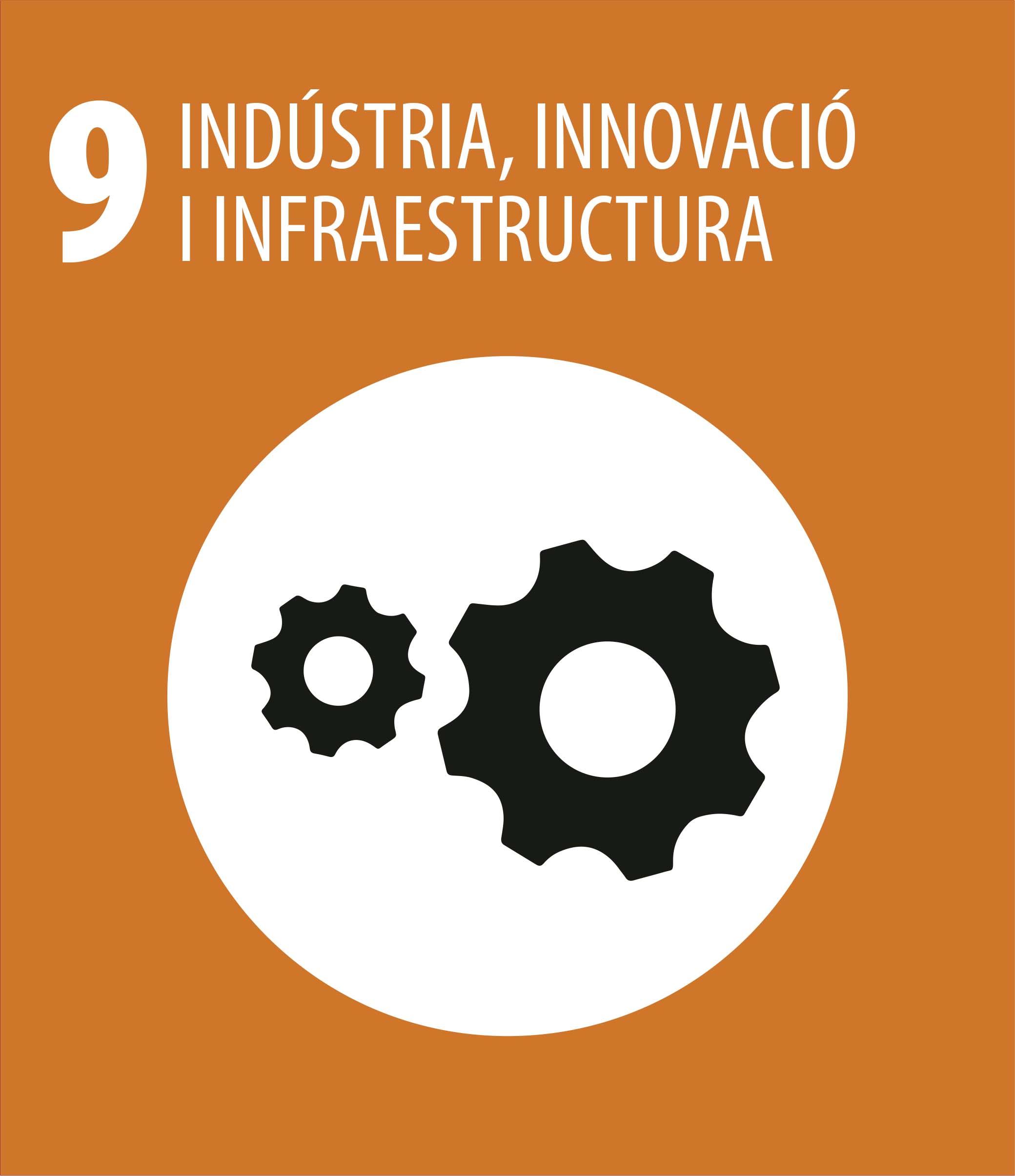 ODS 9 Industria innovacio infraestructura